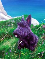 Oil portrait of a Highland Terrier