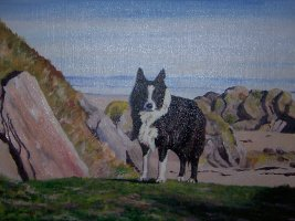 Oil portrait of a collie on the beach